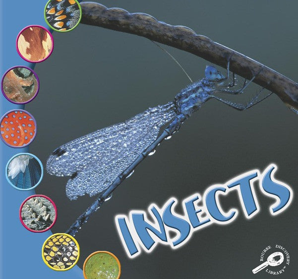 2008 - Insects (WIAA) (Interactive eBook)