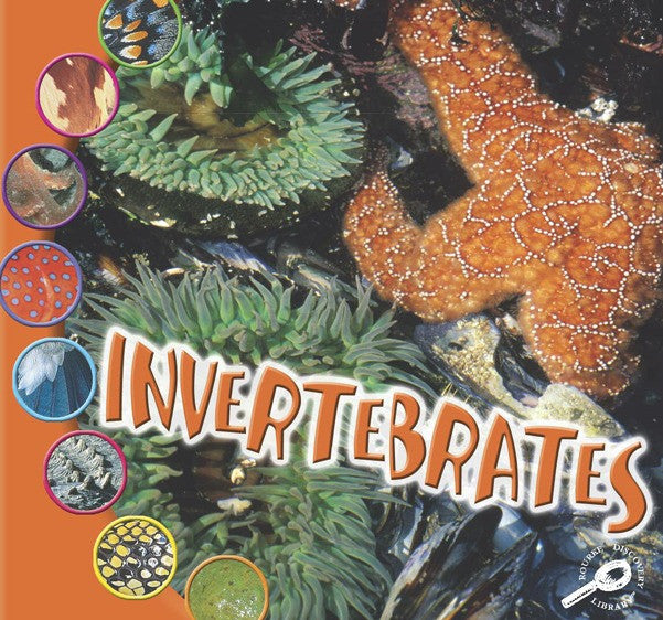 2006 - Invertebrates (eBook)