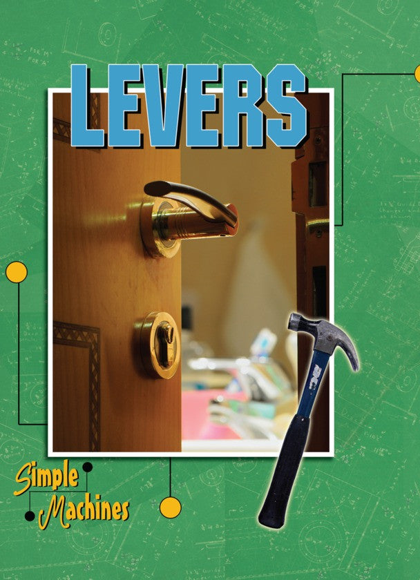 2010 - Levers (Paperback)