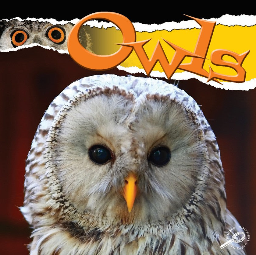 2010 - Owls (eBook)