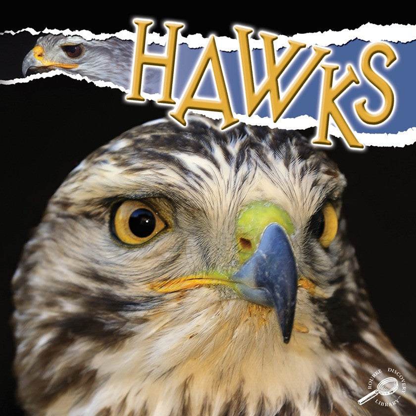 2010 - Hawks (eBook)