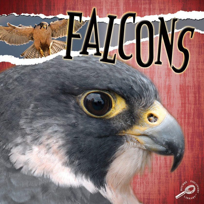 2010 - Falcons (eBook)