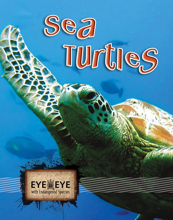 2010 - Sea Turtles (E2E) (Paperback)