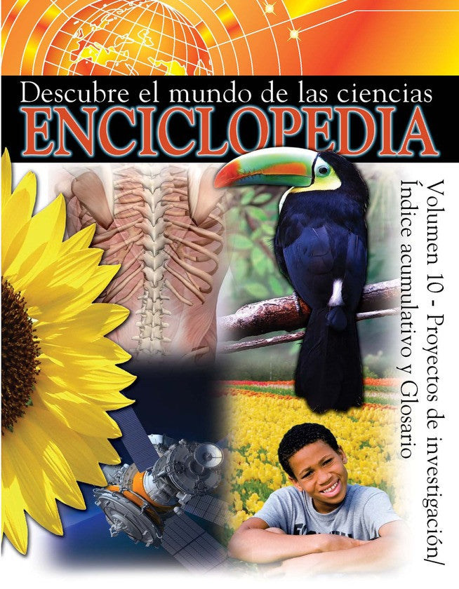 2008 - Proyectos De Investigacíon/ Indice Acumulative Y Glosario (Index and Research Projects) (eBook)