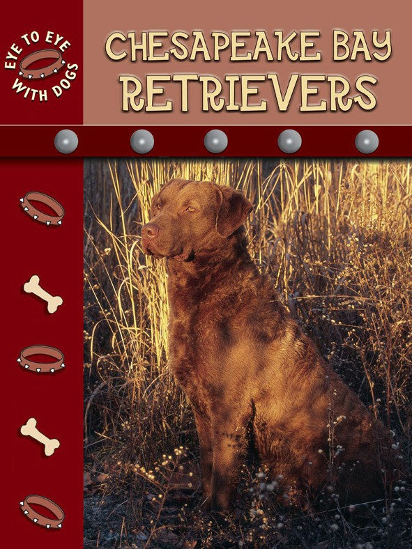 2007 - Chesapeake Retrievers (eBook)