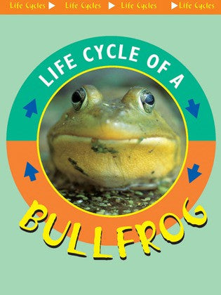 2004 - Life Cycle of A Bullfrog (eBook)