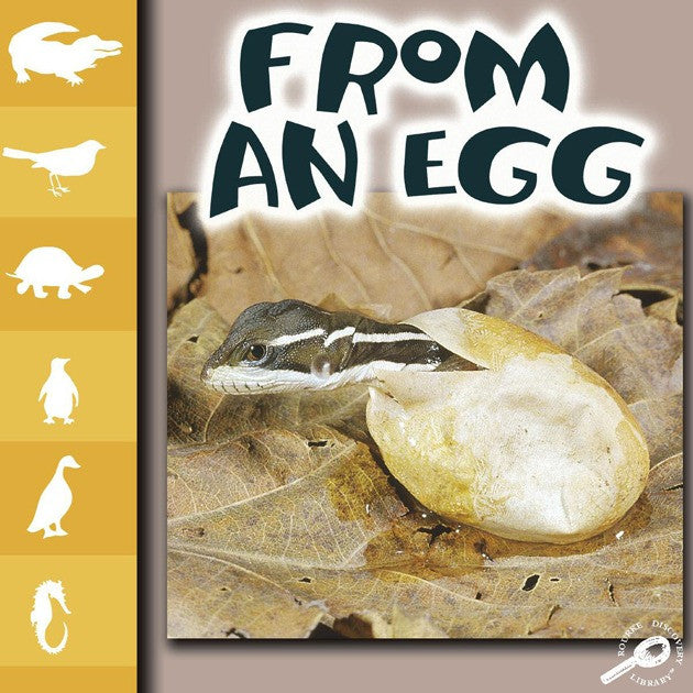 2008 - From An Egg (Interactive eBook)