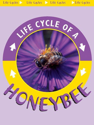 2004 - Honeybee (eBook)