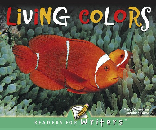 2004 - Living Colors (Paperback)