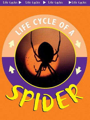 2004 - Spider (eBook)