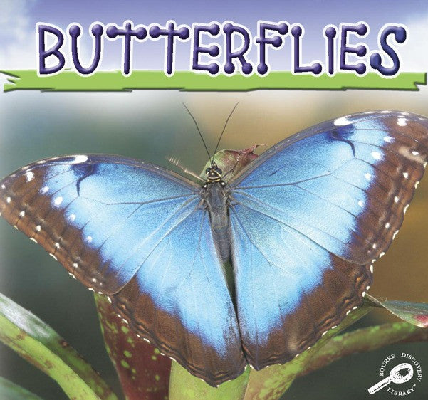 2006 - Butterflies (Interactive eBook)