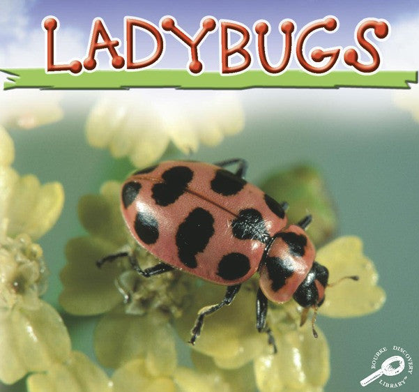 2006 - Ladybugs (eBook)