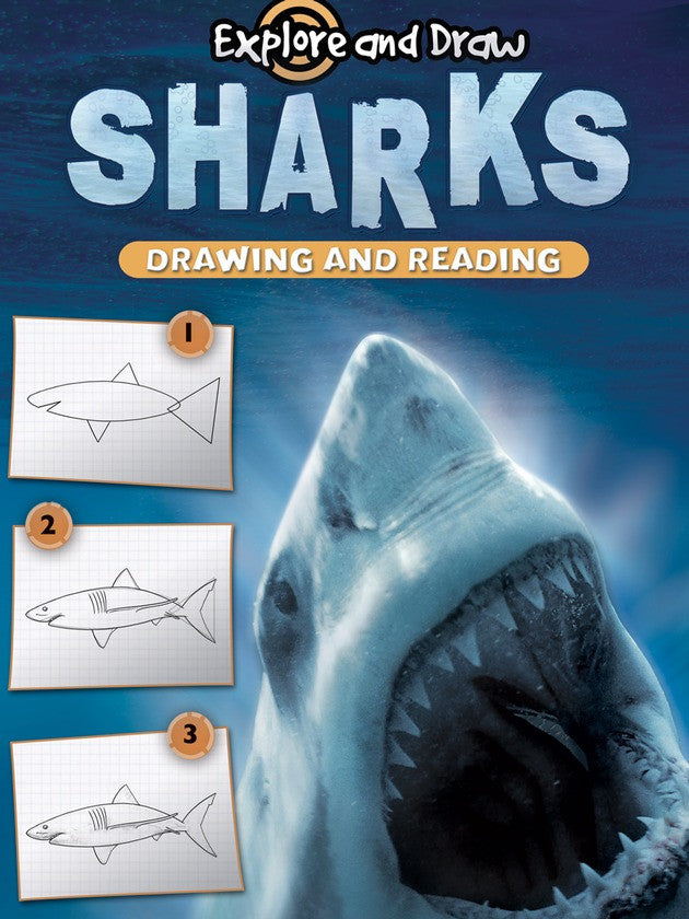 2011 - Sharks, Drawing and Reading (eBook)