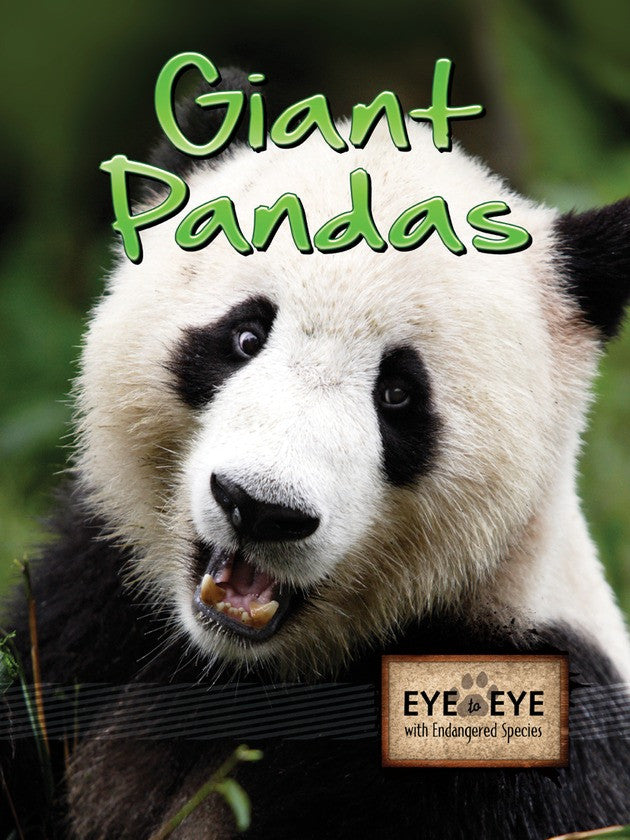 2011 - Giant Pandas (eBook)