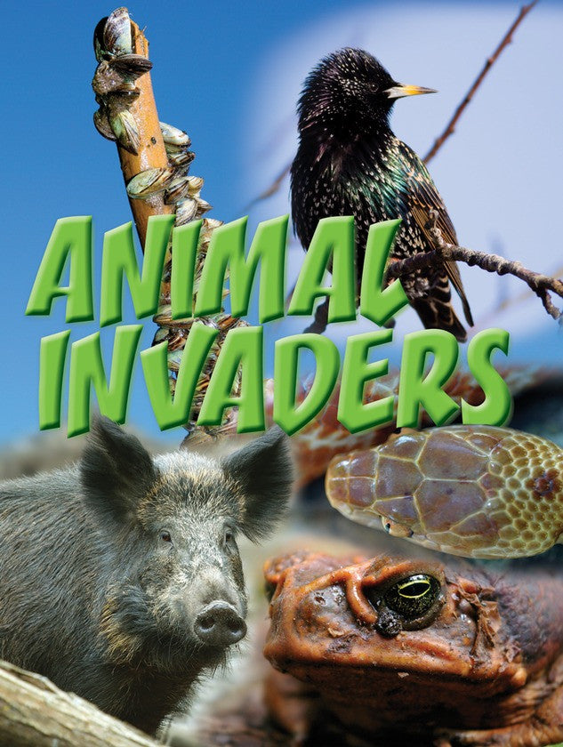 2011 - Animal Invaders (Paperback)
