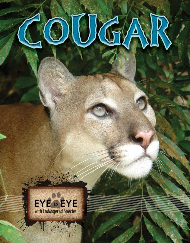 2010 - Cougars (eBook)