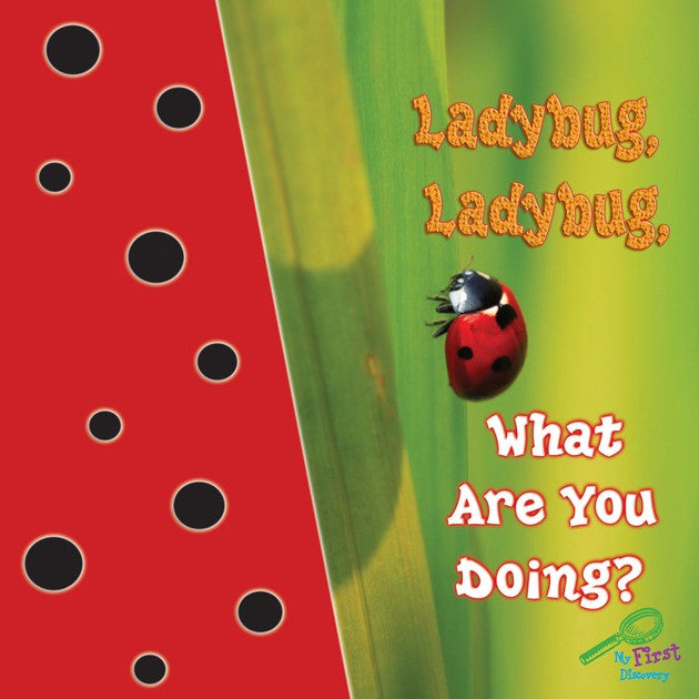 2019 - Ladybug, Ladybug, What Are You Doing? (Board Book)