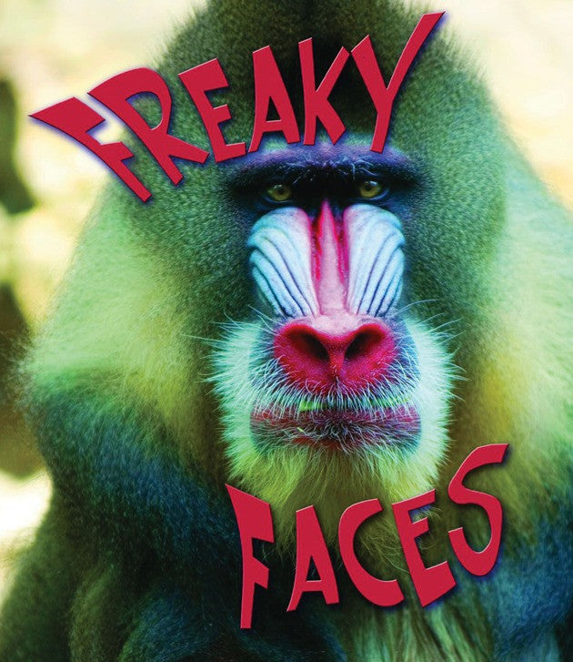2009 - Freaky Faces (eBook)