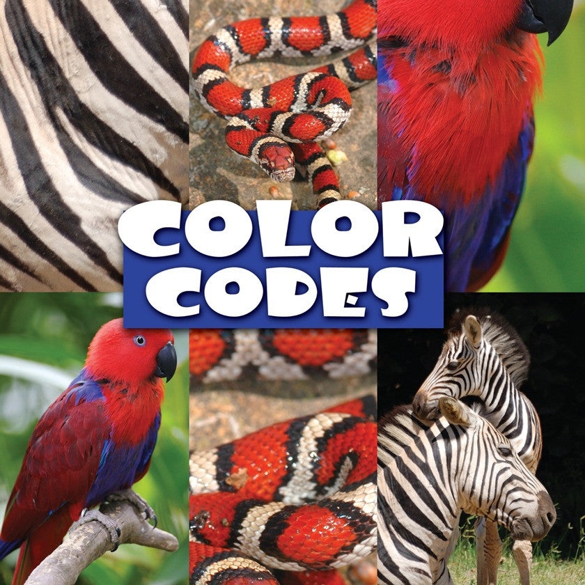 2009 - Color Codes (eBook)