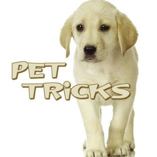2009 - Pet Tricks (eBook)