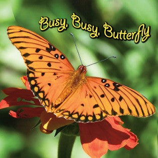 2019 - Busy, Busy Butterfly (Board Book)