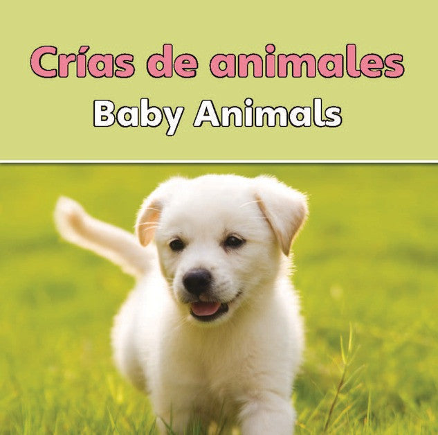2010 - Crias de animales  (Baby Animals) (eBook)