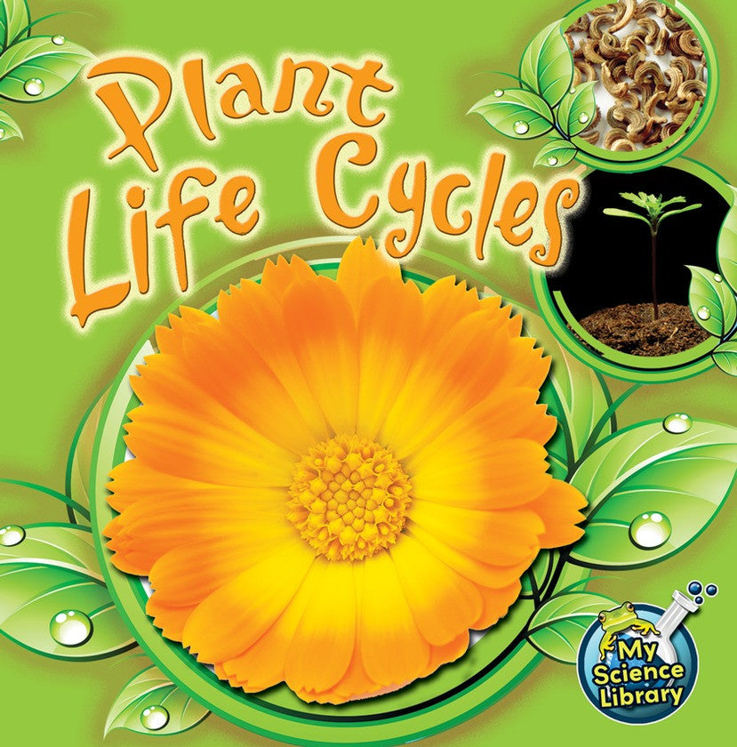 2012 - Plant Life Cycles (Paperback)