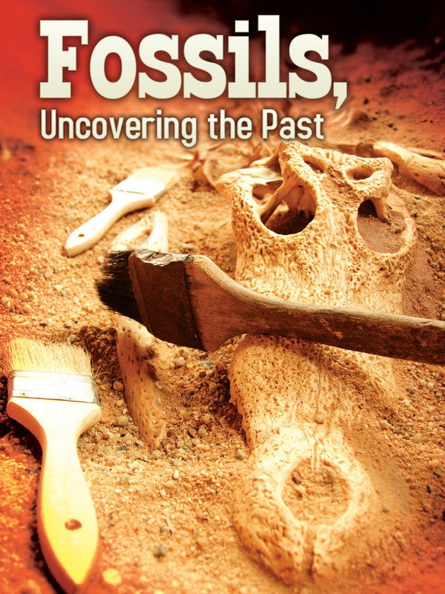 2012 - Fossils (eBook)