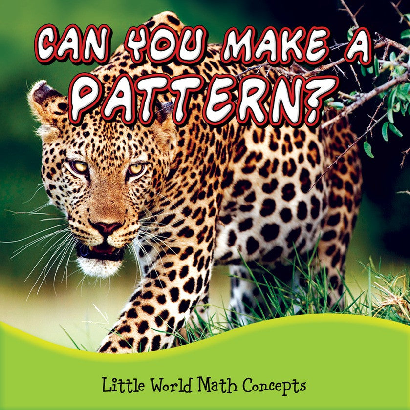 2013 - Can You Make A Pattern? (Paperback)