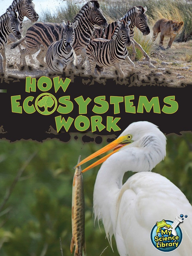 2013 - How Ecosystems Work (Hardback)