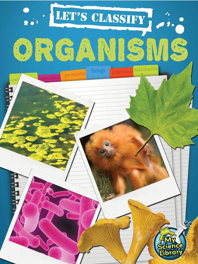 2013 - Let's Classify Organisms (Paperback)