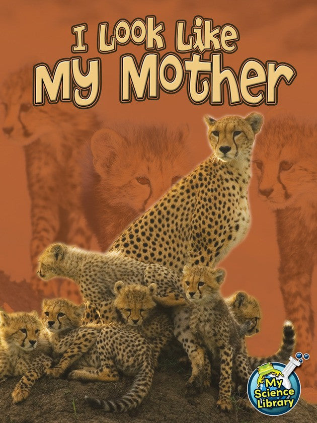 2013 - I Look Like My Mother (Paperback)