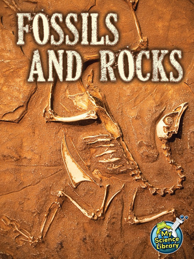 2013 - Fossils and Rocks (eBook)