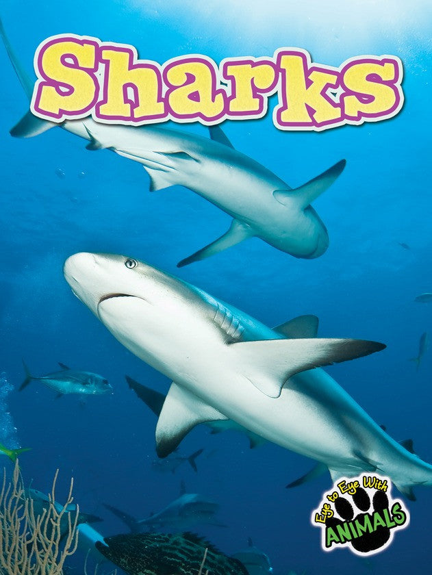 2013 - Sharks (eBook)