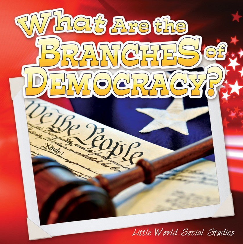2013 - What Are The Branches of Democracy? (Paperback)