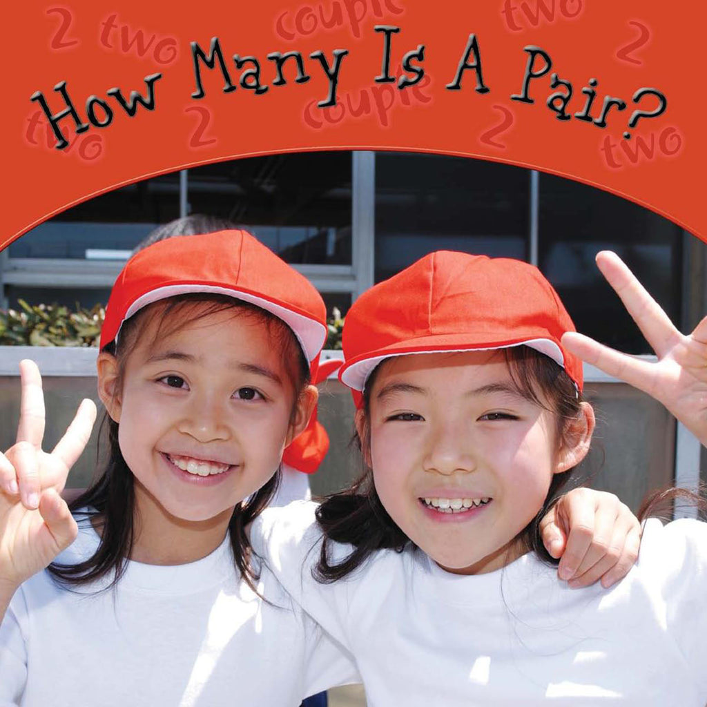 2007 - How Many Is A Pair? (eBook)