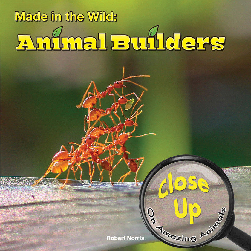 2015 - Made in the Wild (Paperback)