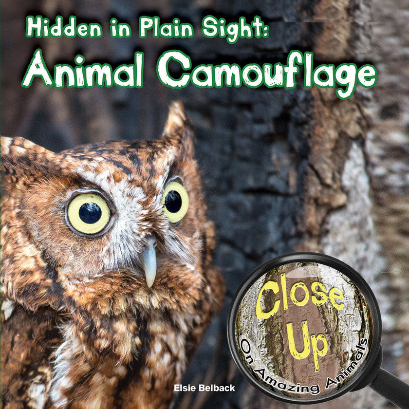 2015 - Hidden in Plain Sight (Hardback)