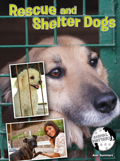 2015 - Rescue and Shelter Dogs (Hardback)