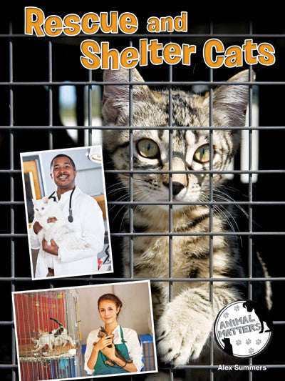 2015 - Rescue and Shelter Cats (Hardback)