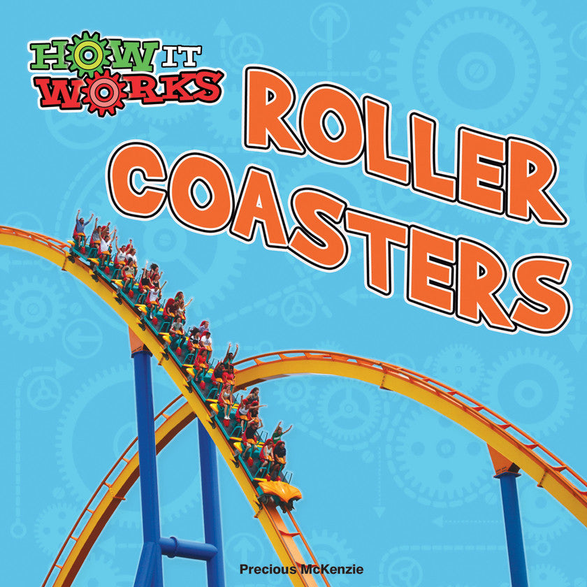 2017 - Roller Coasters (Paperback)