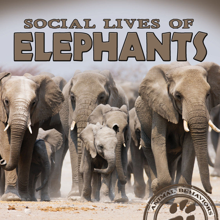 2017 - Social Lives of Elephants (Paperback)
