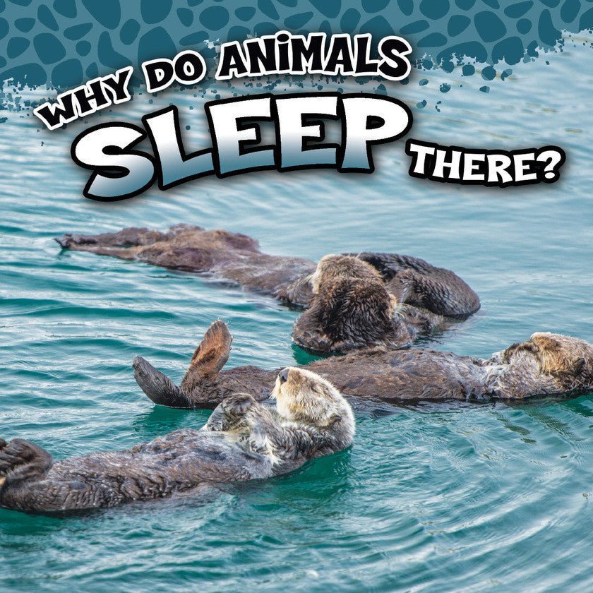 2017 - Why Do Animals Sleep There? (Hardback)