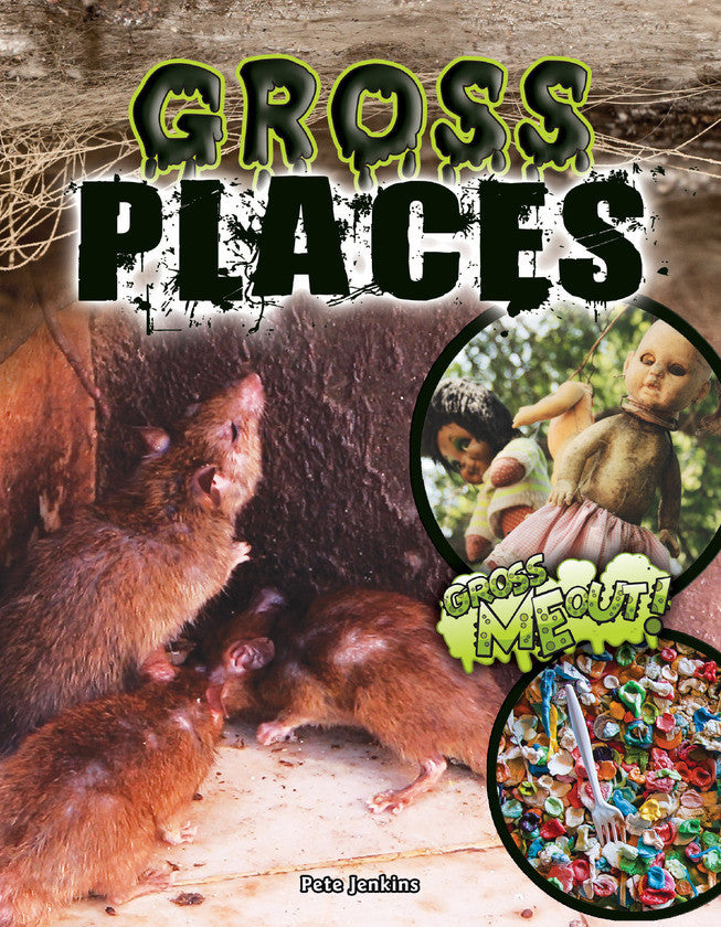2017 - Gross Places (Paperback)
