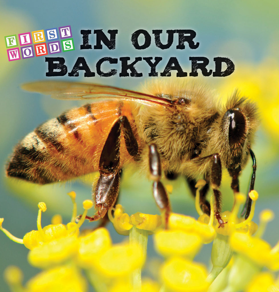 2017 - In Our Backyard (eBook)