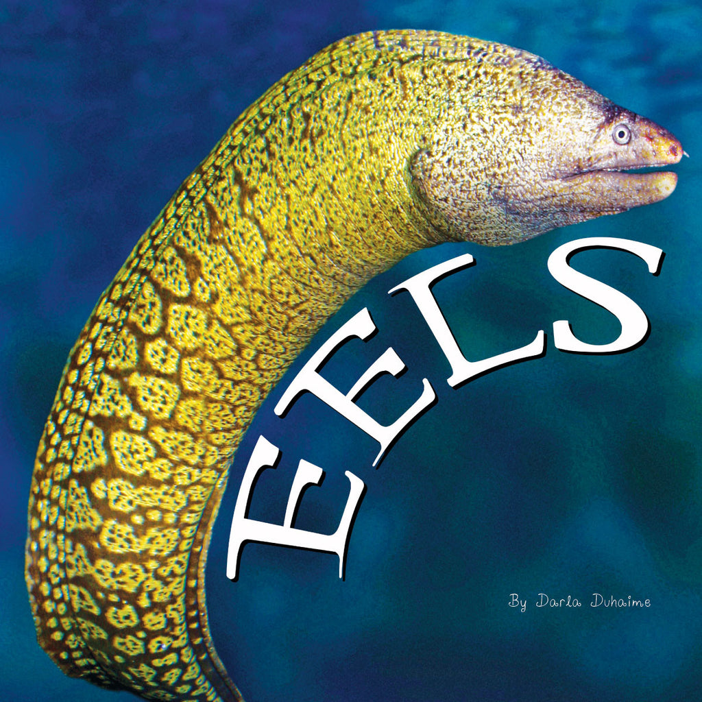 2018 - Eels (eBook)