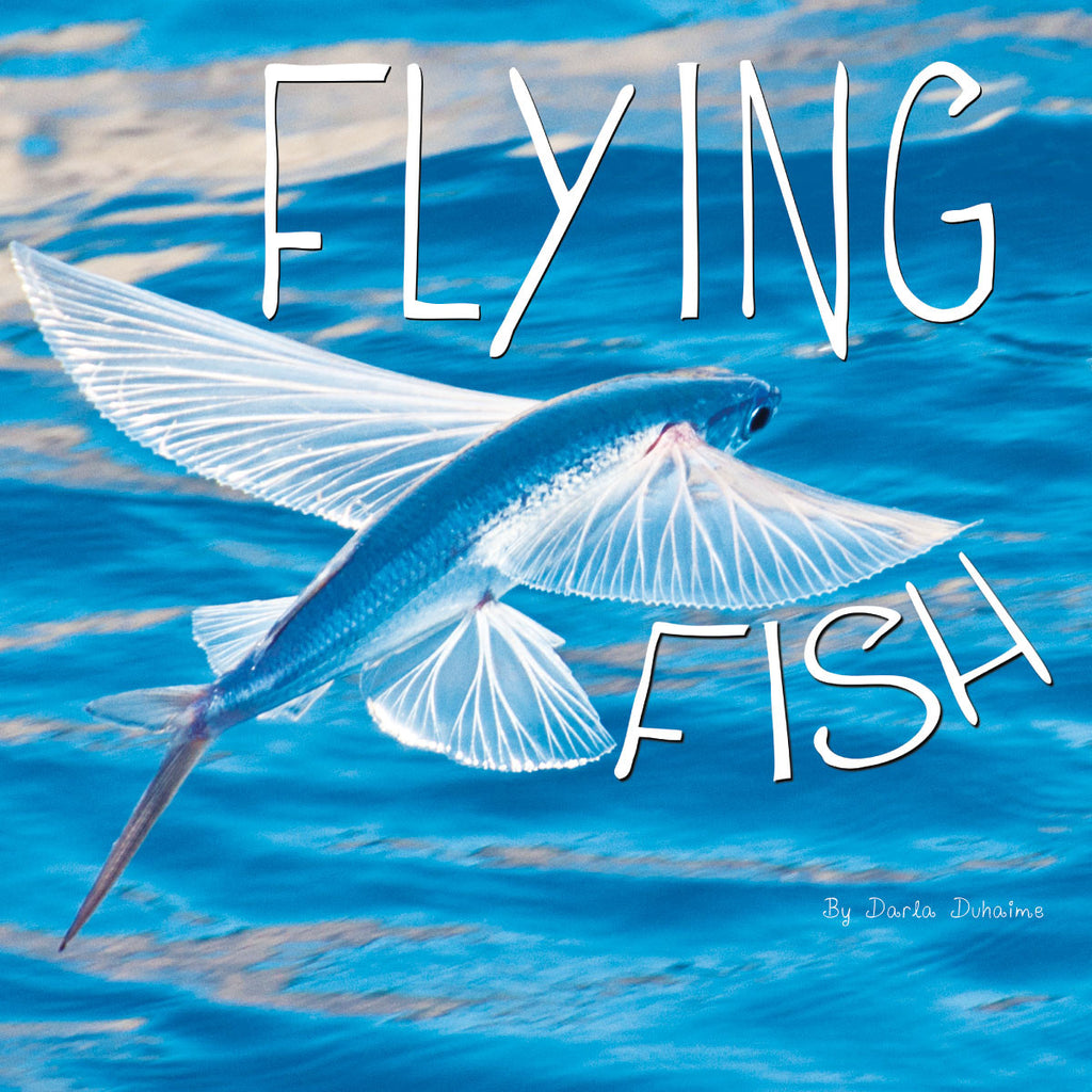 Image of: Kids Flying Fish paperback Rourke Educational Media Ocean Animals series Rourke