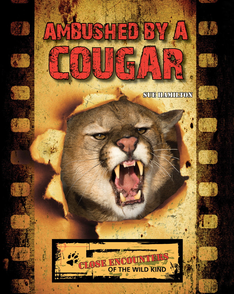 2021 - Ambushed by a Cougar (Paperback)