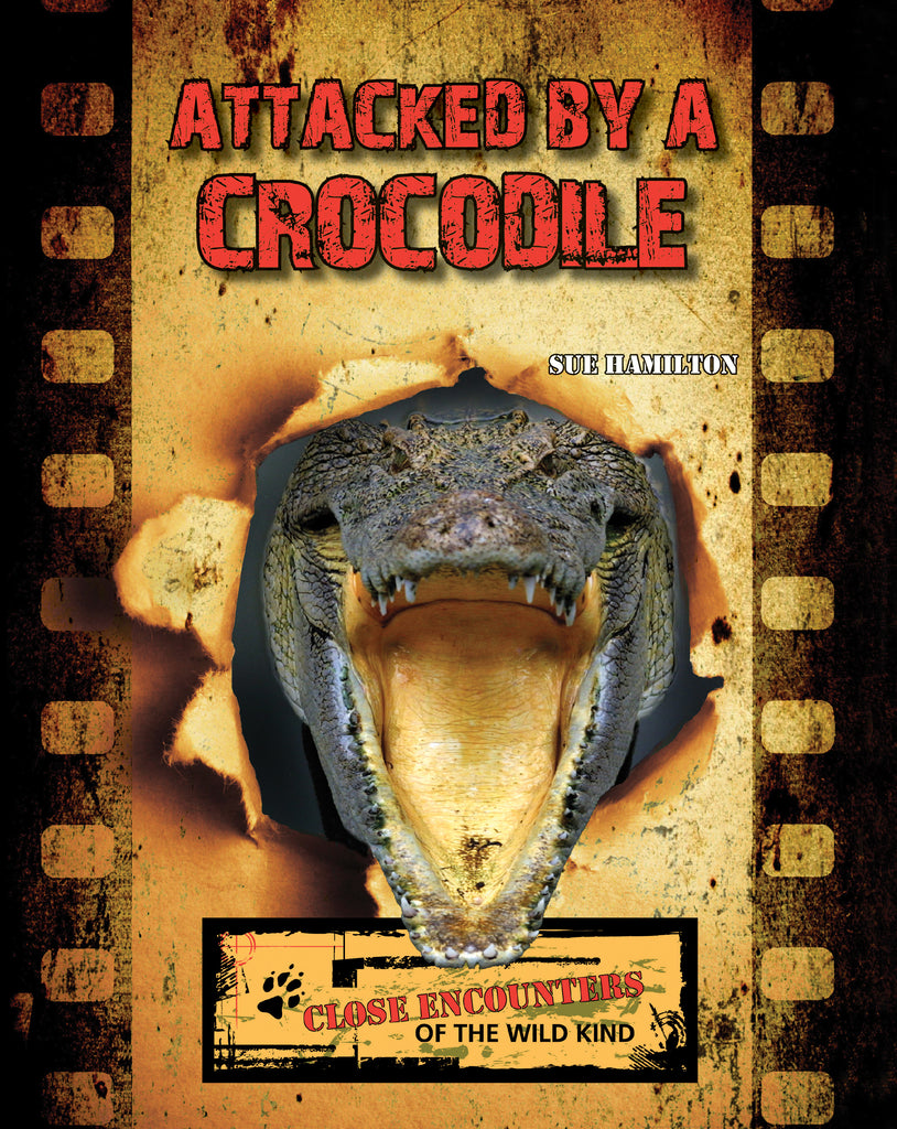 2021 - Attacked by a Crocodile (Paperback)