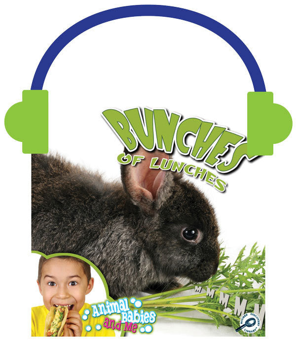 2013 - Bunches of Lunches (Audio File)